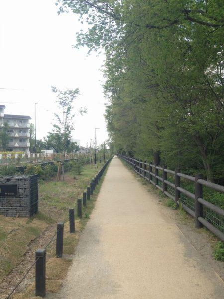 平坦な道の右側に木々 左側に住宅
