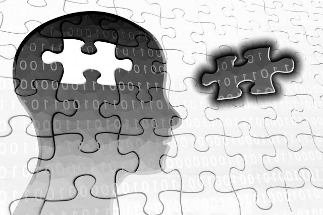 脳の内部をパズルで表したイラスト