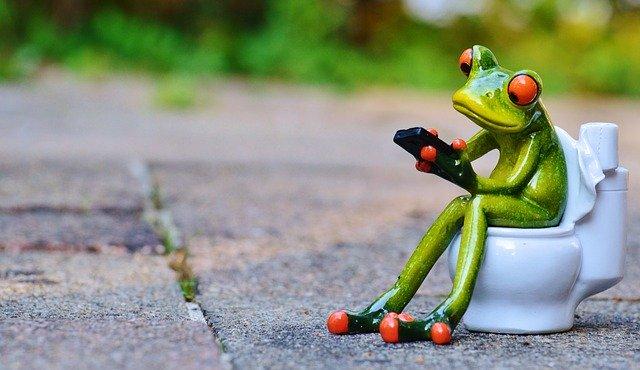 洋式トイレの便座に座るカエル