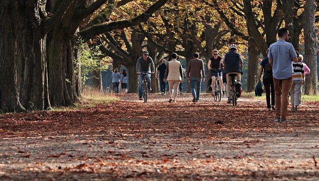 落ち葉の上を歩く人々
